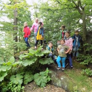 Vycházka do přírody (Hamperk) - Klub badatelů